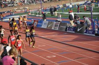 2017 Penn Relays, the UTech, Jamaica Knights Best Performances